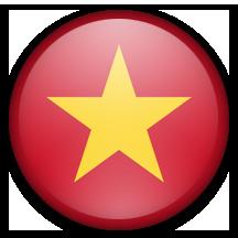 Vietnamese translation Services