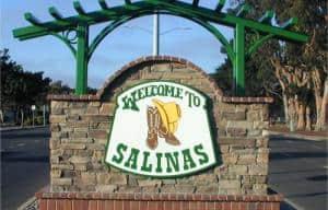 Salinas Translation Company